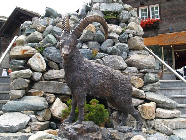 Памятник горному козлу / Фото из Швейцарии