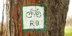 Лучшие чешские города для велотуристов