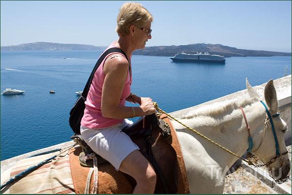 """Подъем по """"Ослиной тропе"""" / Фото из Греции"""