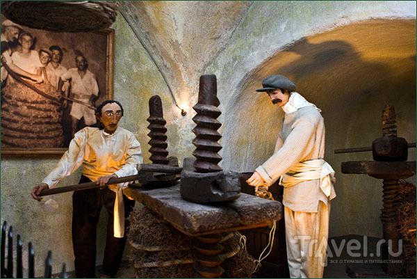 Экспозиция музея вина / Фото из Греции