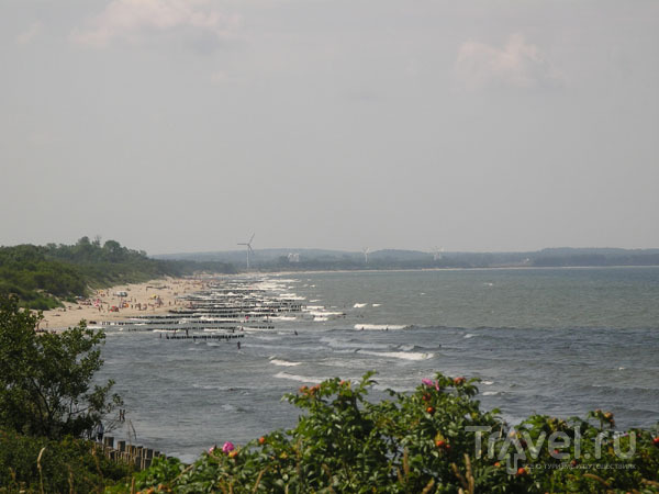 достопримечательности зеленоградска калининградской области фото