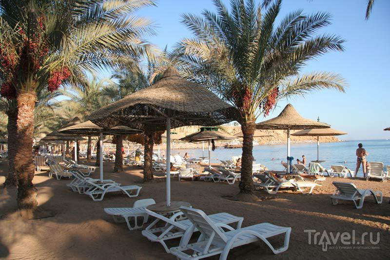 Фото отеля Dessole cataract layalina 4* (Дессоль катаракт лаялина) - Египет...