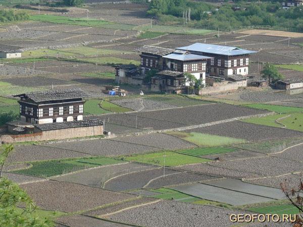 Живописные поля в Бутане / Фото из Бутана