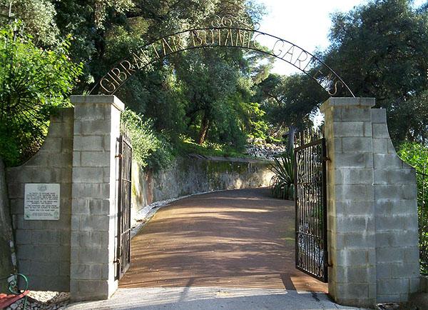 Королевский ботанический сад Гибралтара / Фото из Марокко