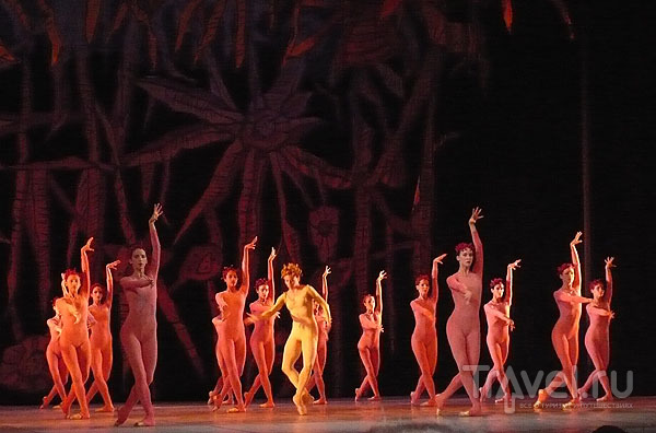 Кубинский балет / Фото с Кубы