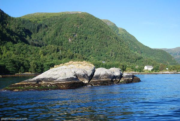Согне-фьорд, Норвегия / Фото из Норвегии