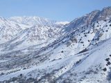3 января в Чимгане / Узбекистан