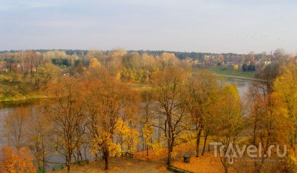 Друскининкай расположился на берегу Немана / Фото из Литвы