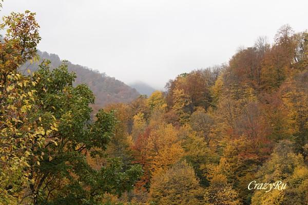 Осенние краски Армении / Фото из Армении