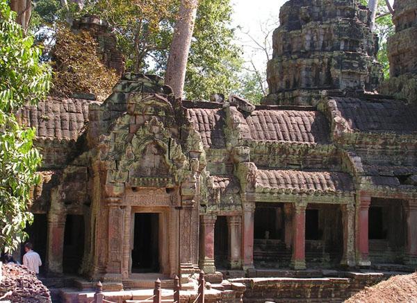 Храм Та-Пром и буйство природы / Фото из Камбоджи