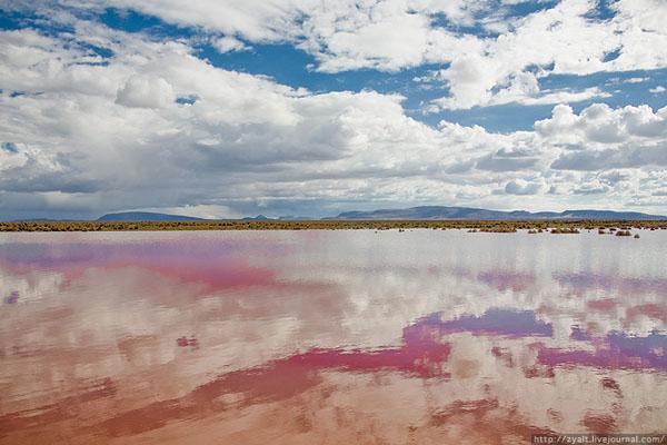 Красное озеро в Боливии / Фото из Боливии