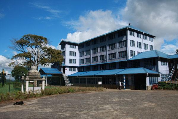 Чайная фабрика, Нувара-Элия / Фото со Шри-Ланки