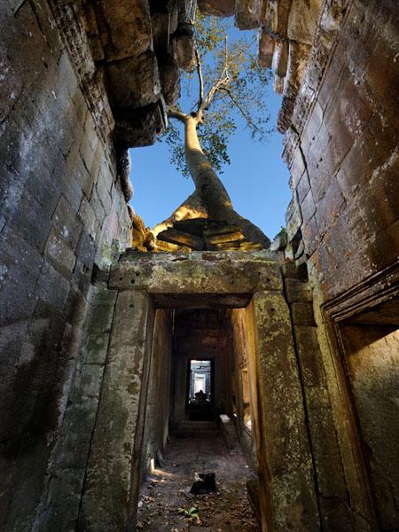 Монастырь Пре-Кан был посвящен отцу короля Джаявармана VII / Фото из Камбоджи