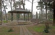 Парк усадьбы дворца Короля Николы I / Сербия