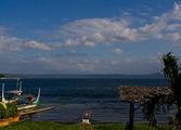 На берегу Taal Lake / Филиппины
