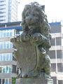Умилительно испуганный лев / Нидерланды