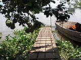 Помело, ананасы, джек-фрукты, дурианы  / Вьетнам
