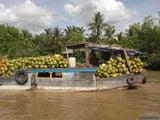 Путь кокосов / Вьетнам
