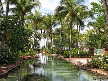 Пальмы, бассейны, и каналы / Багамские острова