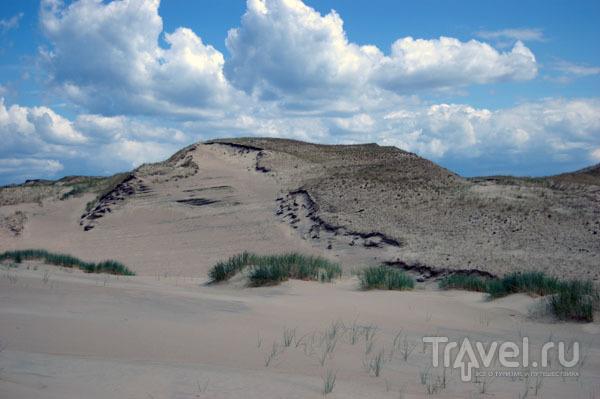 Виды дюны Агилос / Фото из Литвы