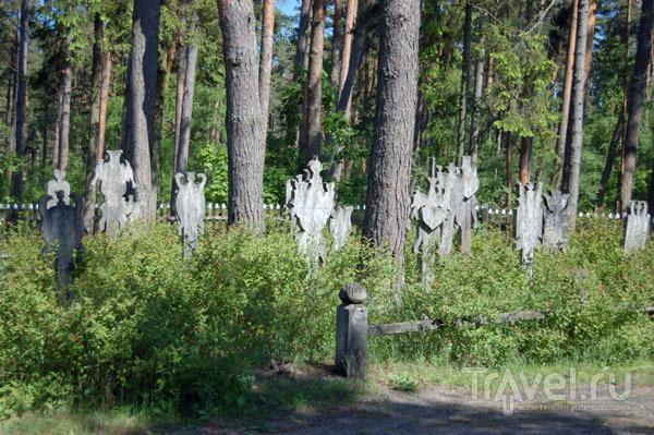 Этнографическое кладбище в Ниде  / Фото из Литвы