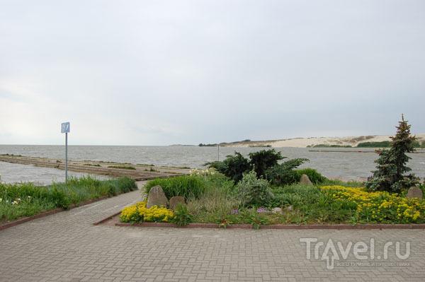 Курорт Нида на Куршской косе / Фото из Литвы