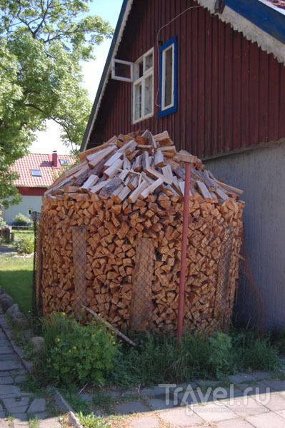 Задний двор дома в Ниде  / Фото из Литвы