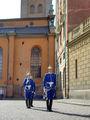 Королевская гвардия / Швеция