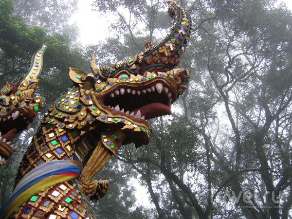 Драконы в тумане, храм Ват-Пхратхат-Дой-Сутеп / Фото из Таиланда