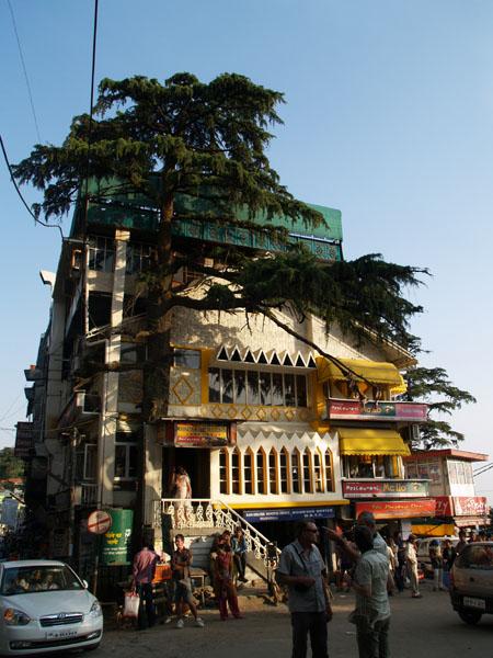 Ресторан McLlo на центральной площади Макледганджа / Фото из Индии