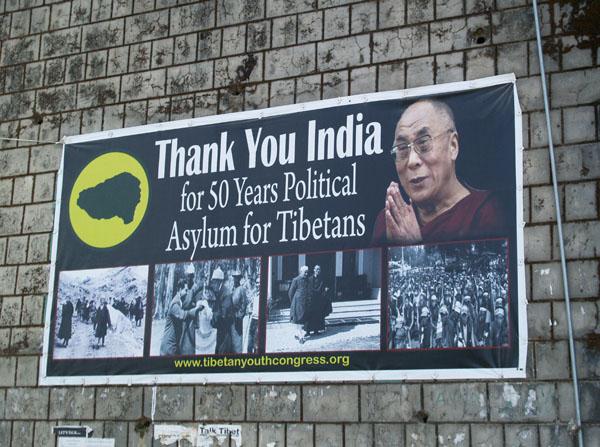 Благодарность Индии за 50-летнее прибежище / Фото из Индии