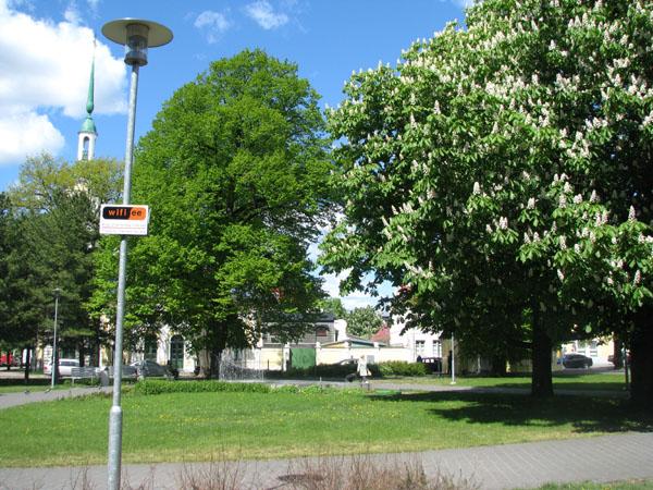 В городском парке в центре Пярну есть беспроводной интернет  / Фото из Эстонии