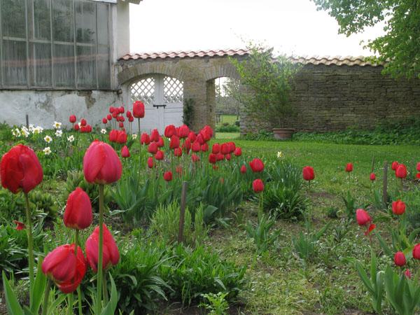 В садах мызы Сагади / Фото из Эстонии