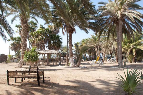 Пляж при отеле в Аль-Мохе / Фото из Йемена
