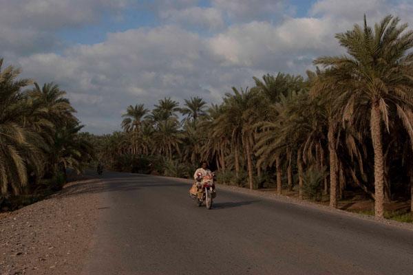 Мотоциклист на дороге в Тихаме / Фото из Йемена