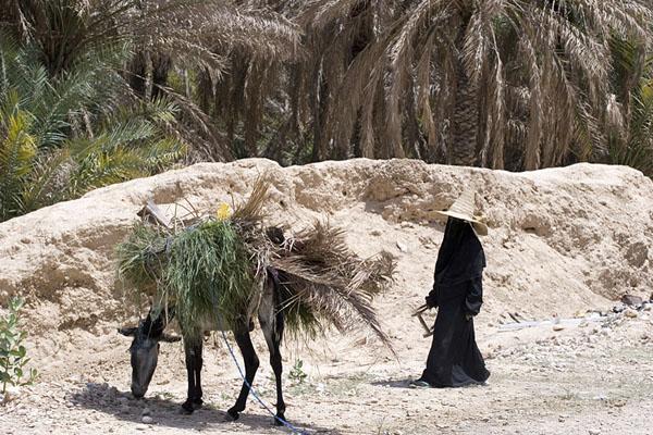 Жизнь в Йемене - без массового туризма и его последствий / Фото из Йемена