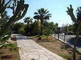 Дорожка в парке / Кипр