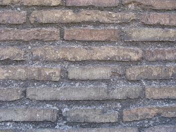 Стена / Ватикан