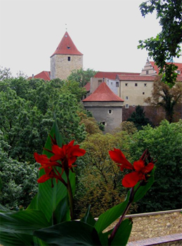 Вид на Пражский Град через Олений ров / Чехия