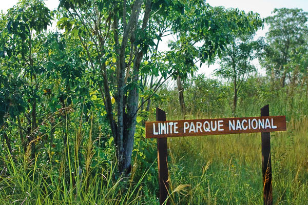 Четыре национальных парка Кубы входят в Список Всемирного наследия ЮНЕСКО / Фото с Кубы