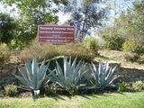 """""""Temescal Gateway Park"""""""