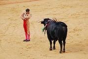 Антонио Феррера / Испания