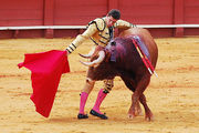 Даниэль Луке, лучший матадор Севильи / Испания