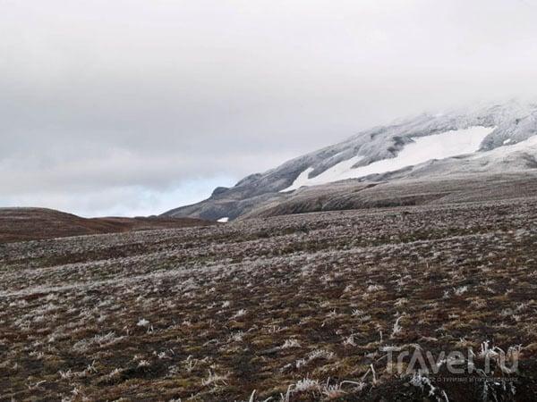 Зона вечной мерзлоты около вулкана Горелого / Фото из России