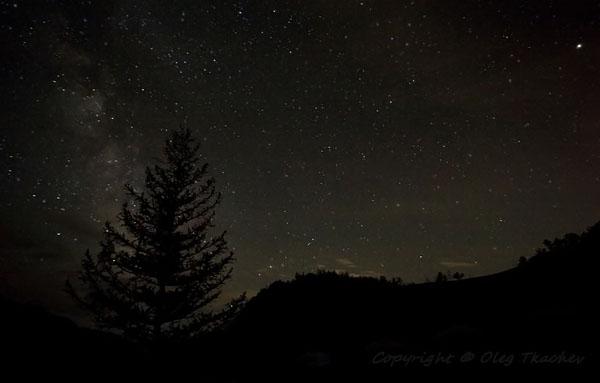 Звездное небо над Монголией, парк Горхи-Тэрэлж / Фото из Монголии