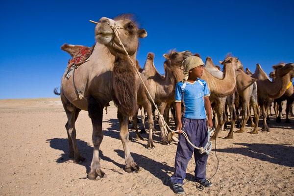 Дети пустыни Гоби, Монголия / Фото из Монголии