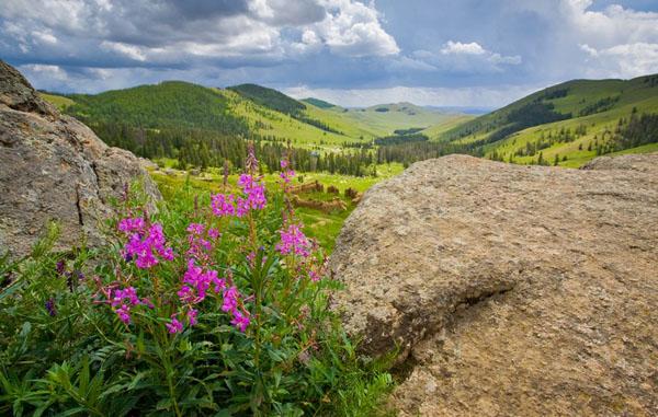 В долине Манзушир удивительно спокойно, Монголия / Фото из Монголии