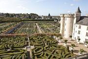 Декоративный сад / Франция