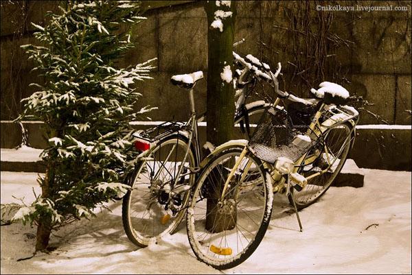 Заснеженные велосипеды в Стокгольме / Фото из Швеции