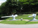 Современные пушки / Сингапур